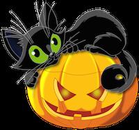 Large_Transparent_Halloween_Pumpkin_with_Black_Cat_Clipart